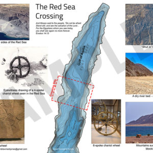 Red Sea Crossing poster collage. One of the 16 posters available in this new set.