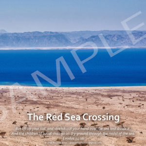 Red Sea crossing site poster.